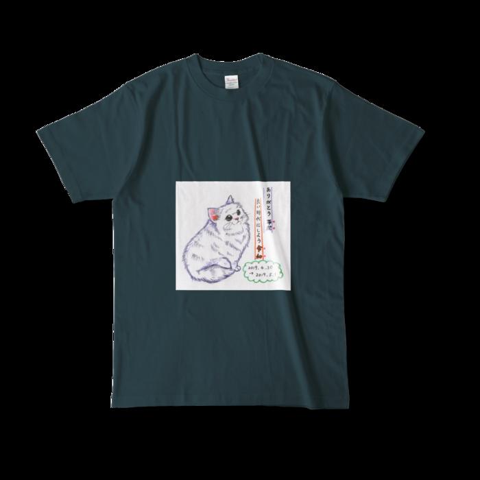 カラーTシャツ(濃色) - L - 正面 - デニム
