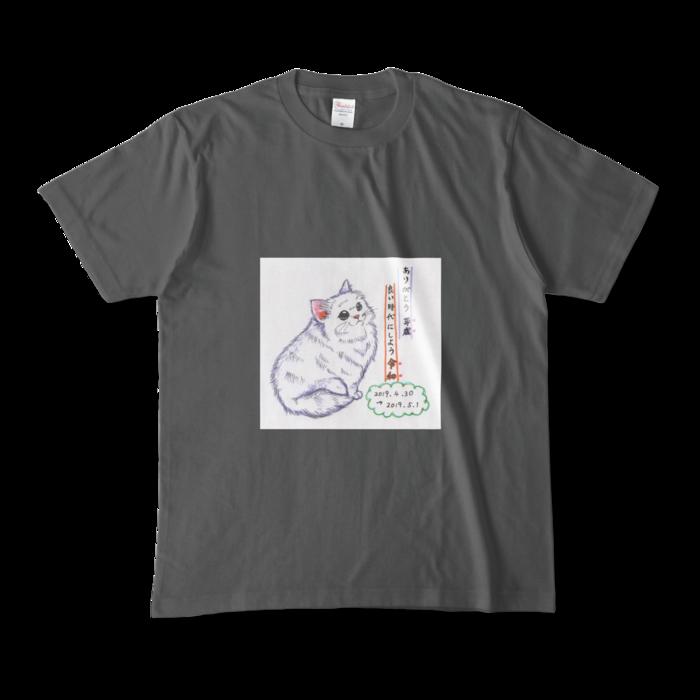 カラーTシャツ(濃色) - M - 正面 - チャコール