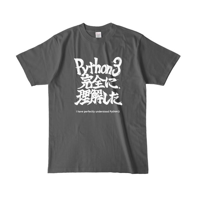 カラーTシャツ(濃色) - L - チャコール