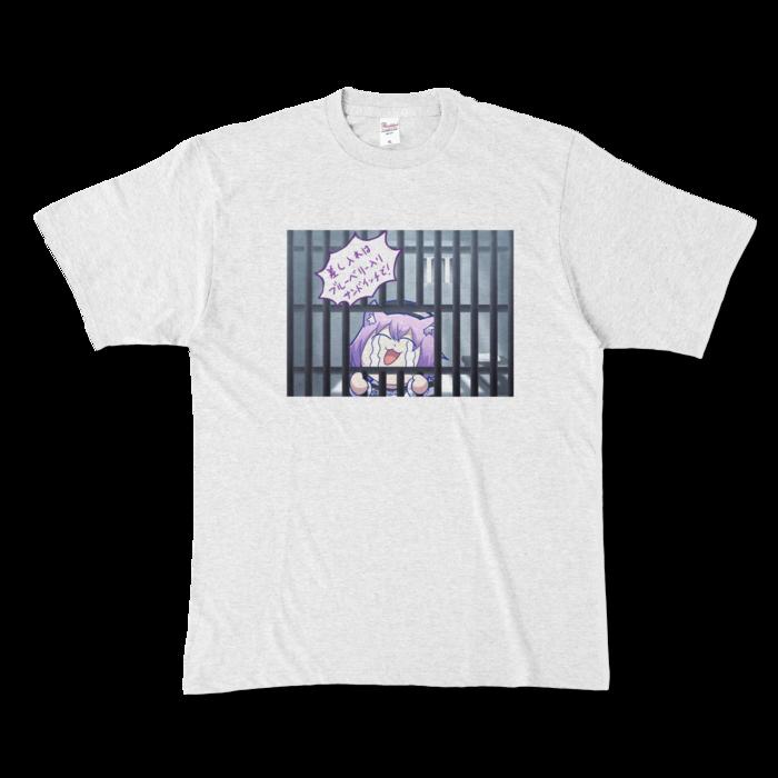 カラーTシャツ - XL - アッシュ (淡色)