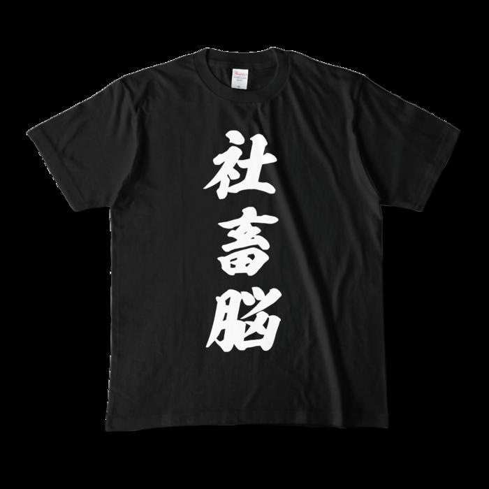 カラーTシャツ - M - ブラック (濃色)