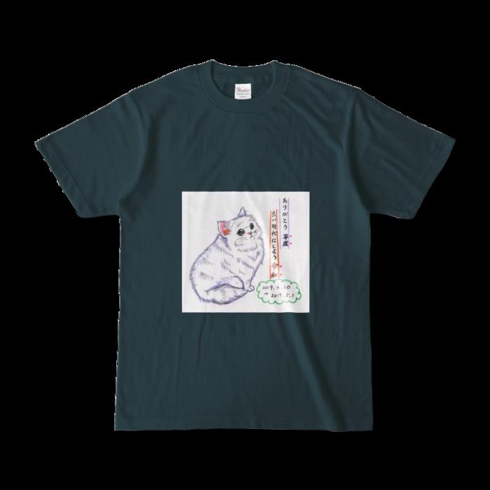 カラーTシャツ(濃色) - S - 正面 - デニム
